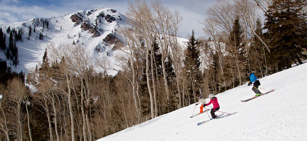Park City Mountain, Mid-Mountain Meadows with Jupiter Peak in the background