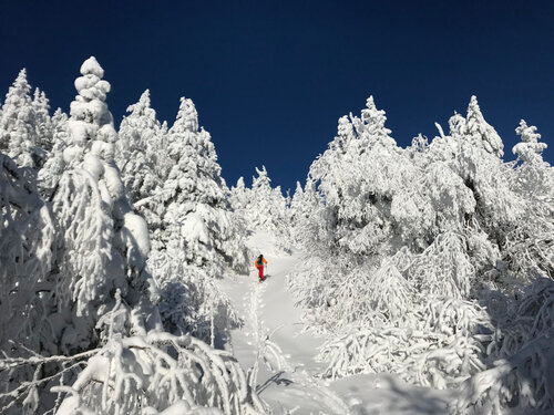 Bolton Valley Resort's backcountry trails and acreage